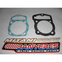 Cylinder and cylinder head gasket kit for Honda RTL250 S - TLR 250 classic