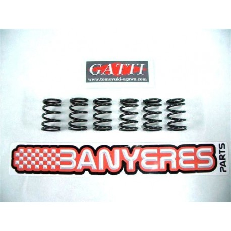 ogawa replica clutch springs for 4rt rtl stronger banyeres trial parts. Black Bedroom Furniture Sets. Home Design Ideas