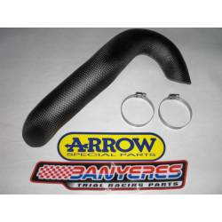 Front exhaust carbon guard for Beta EVO 2T Arrow