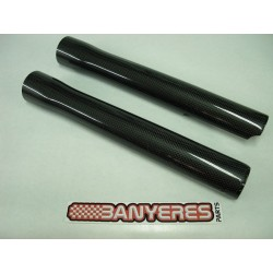 Protector Gas carbon fork